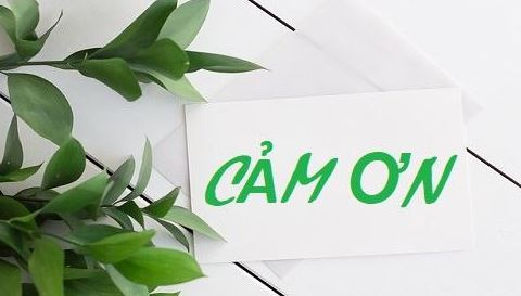 cach-noi-cam-on-bang-tieng-viet