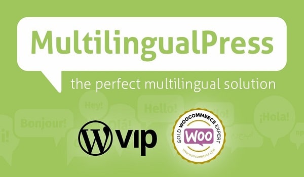 top-8-plugin-dich-wordpress